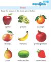 Kindergarten Science Fruits