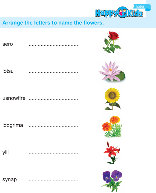 UKG Science Book_Page_31