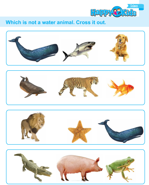 UKG Science Book_Page_53