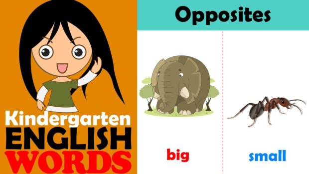 Opposites for Kids - Kindergarten English